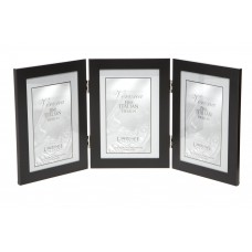 Brayden Studio Ponce Hinged Triple Picture Frame BRSD3507