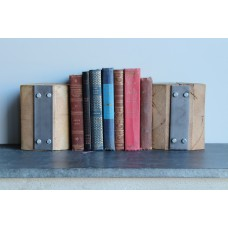 Williston Forge Handcrafted Reclaimed Barn Wood Bookends WLFR7230