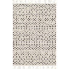 Laurel Foundry Modern Farmhouse Hudgens Distressed Southwestern Ivory/Charcoal Area Rug LFMF3097