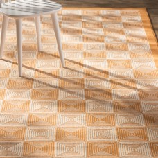 Zipcode Design Charlotte Orange Indoor/Outdoor Area Rug ZIPC3384